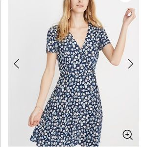 Madewell French Flora Blue Moon Dress